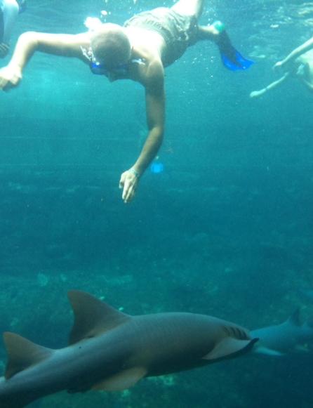 La rechini