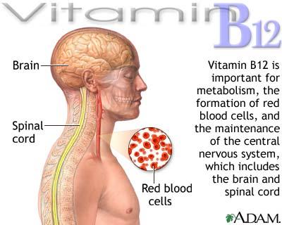 hcg vitamin b12