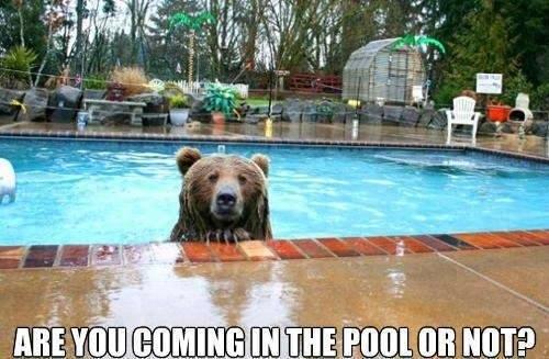 Funny-Swimming-9